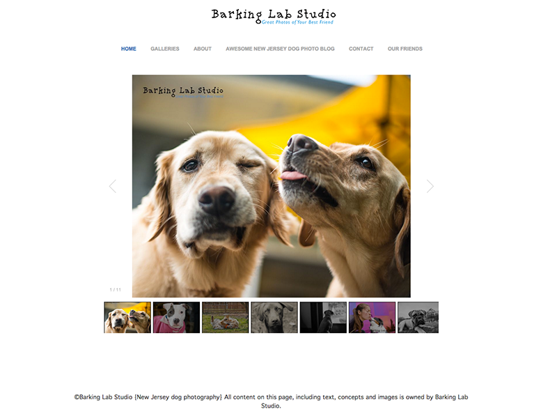 Barking Lab Studio screen shot